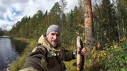 Ловля щуки на лесных озерах