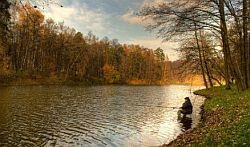 Поплавочная ловля плотвы осенью